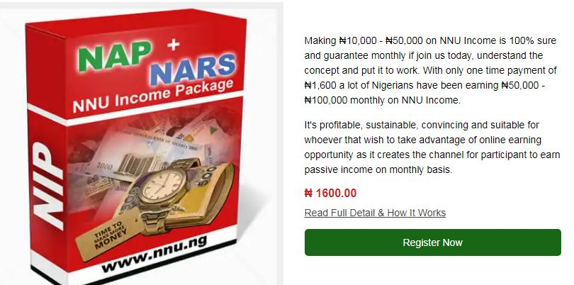 Screenshot001_NNN income Program